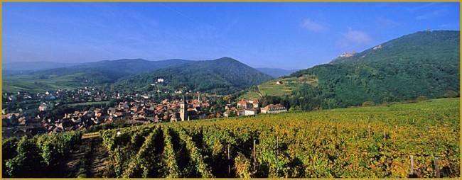 L'automne en Alsace... Couleur et détente....